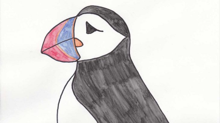 Puffin-for-blog
